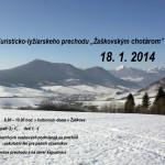 plagat_2014